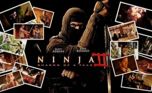 NINJA 2 SHADOW OF A TEAR