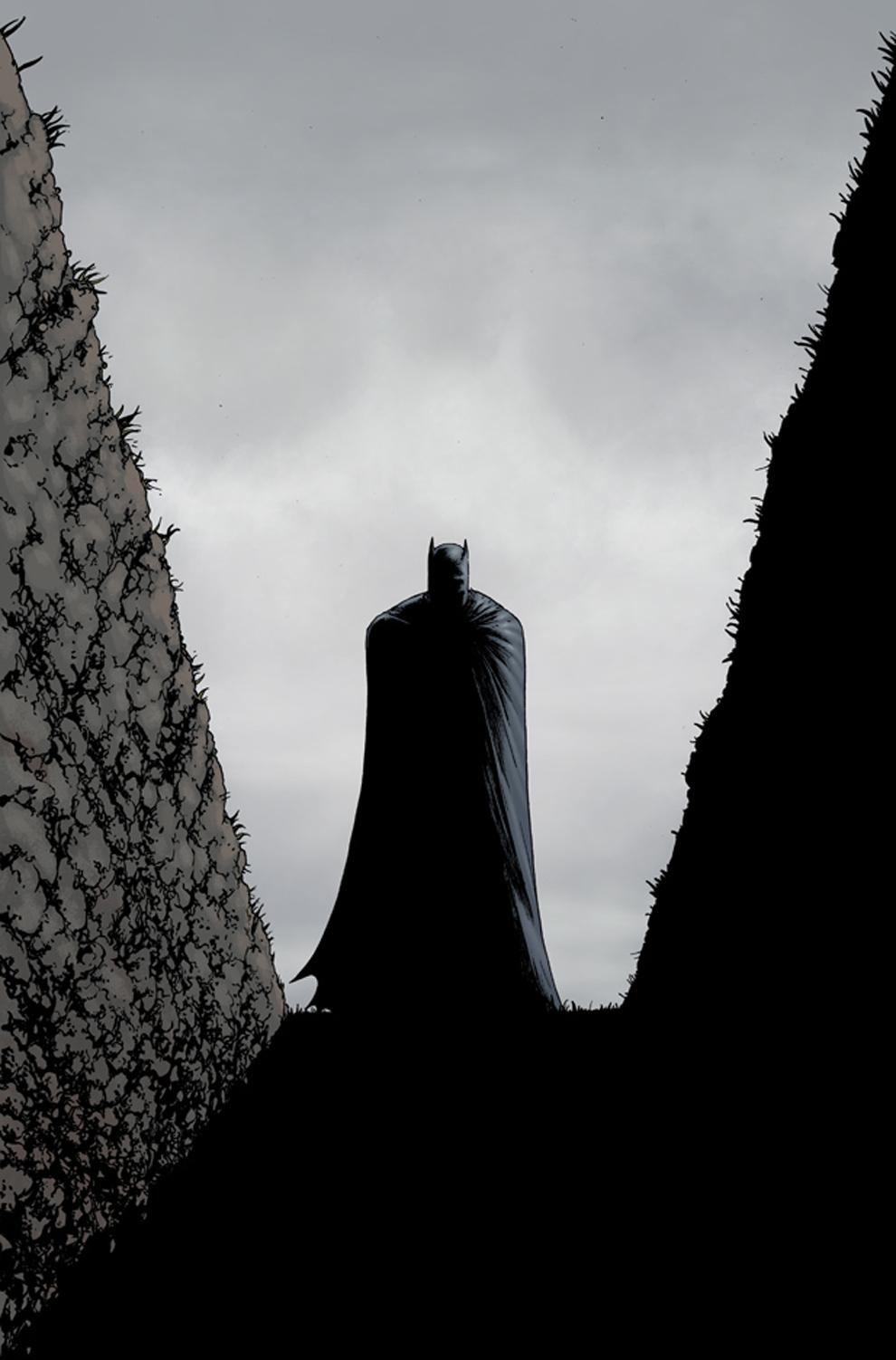 batman-inc-9
