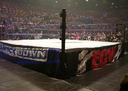 SD_ECW_Ring